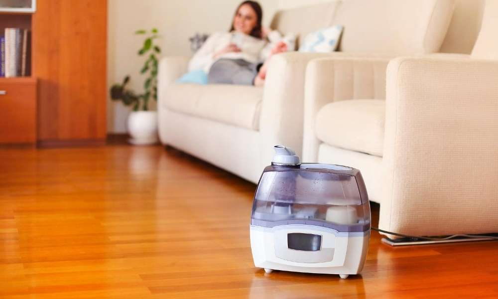 Top 10 Best Warm Mist Humidifiers For Large Room in 2020