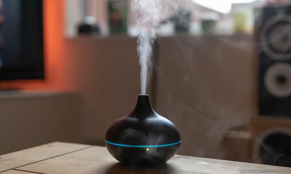Cool Or Warm Mist Humidifier
